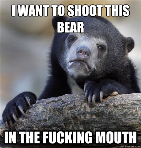 i want to shoot this bear in the fucking mouth - Confession Bear