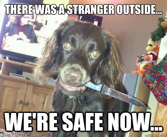 there was a stranger outside were safe now - Overly Protective Dog