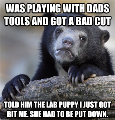 was playing with dads tools and got a bad cut told him the l - Confession Bear
