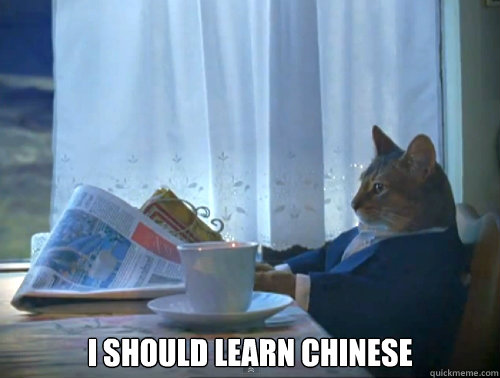 i should learn chinese - The One Percent Cat