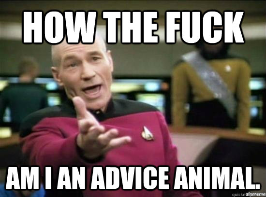 how the fuck am i an advice animal - Annoyed Picard HD