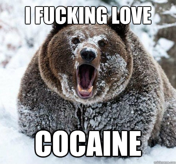 i fucking love cocaine - Confession Bear