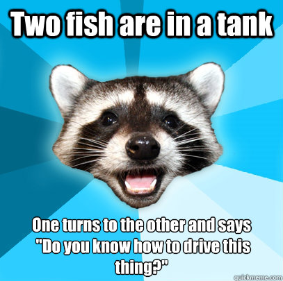 two fish are in a tank one turns to the other and says do  - Lame Pun Coon