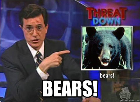 bears - Stephen Colbert