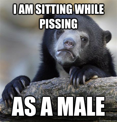 i am sitting while pissing as a male - Confession Bear