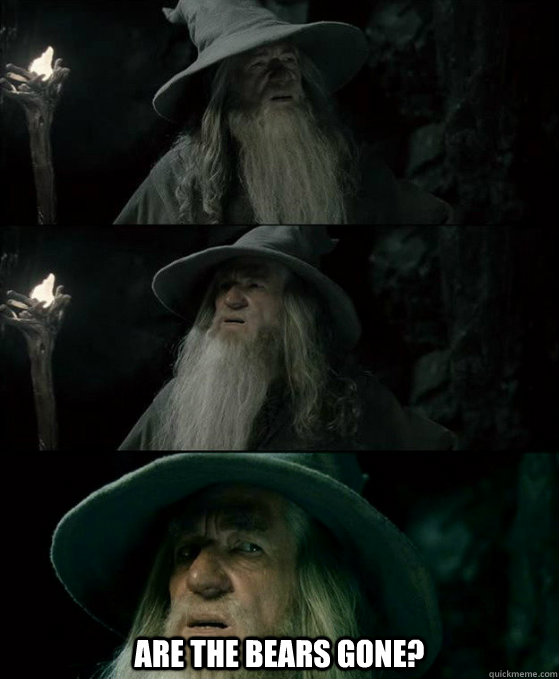are the bears gone - Confused Gandalf