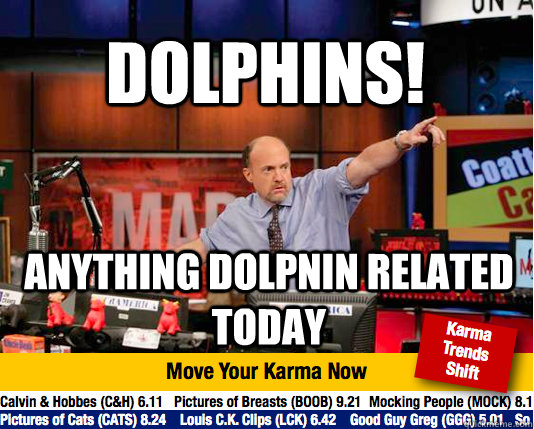 dolphins anything dolpnin related today - Mad Karma with Jim Cramer