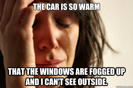 the car is so warm that the windows are fogged up and i can - First World Problems