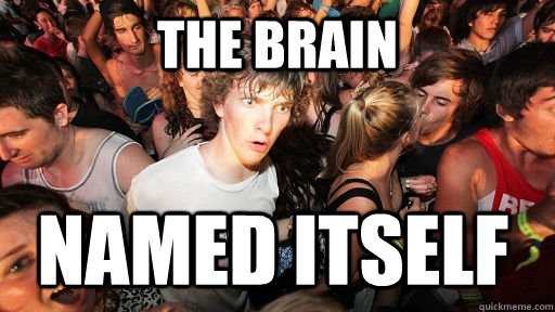 the brain named itself - Sudden Clarity Clarence