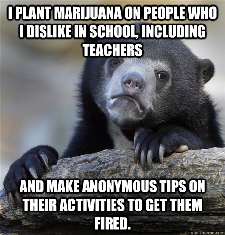 i plant marijuana on people who i dislike in school includi - Confession Bear