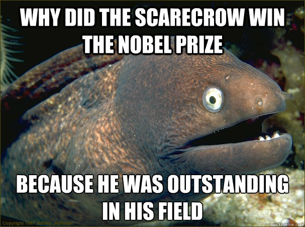 why did the scarecrow win the nobel prize because he was out - Bad Joke Eel