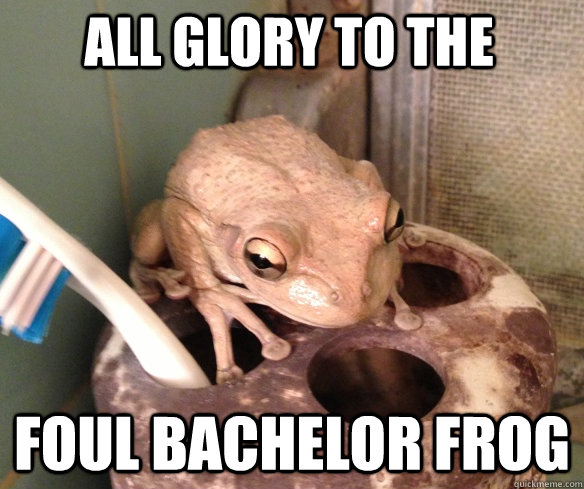 all glory to the foul bachelor frog -