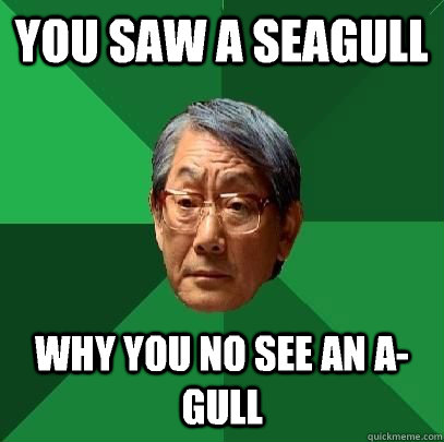 you saw a seagull why you no see an agull - High Expectations Asian Father