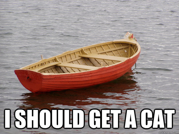i should get a cat - Lonely Boat