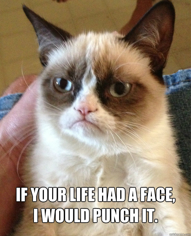 if your life had a face i would punch it - Grumpy Cat