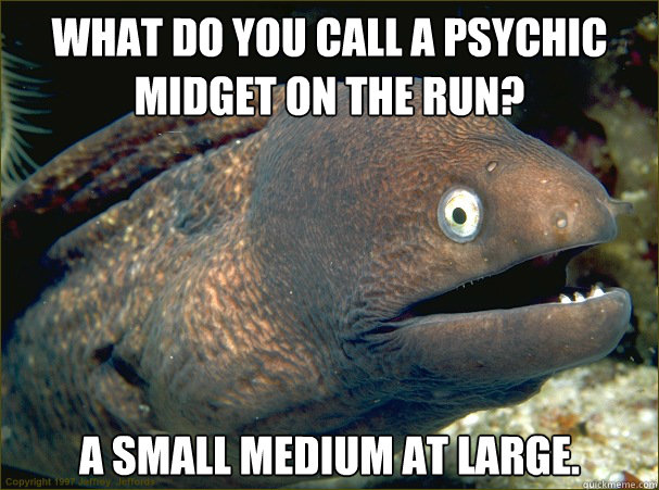 what do you call a psychic midget on the run a small medium - Bad Joke Eel