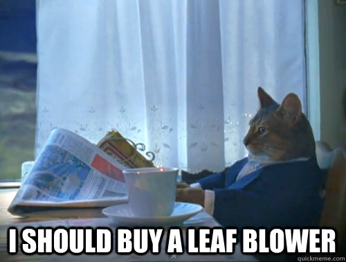 i should buy a leaf blower - The One Percent Cat