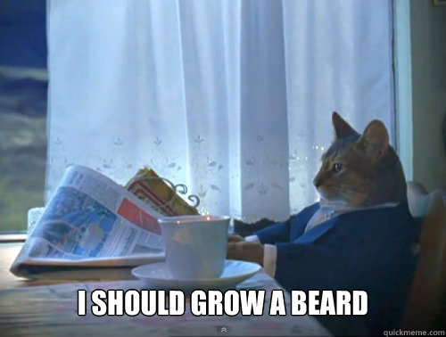 i should grow a beard - The One Percent Cat