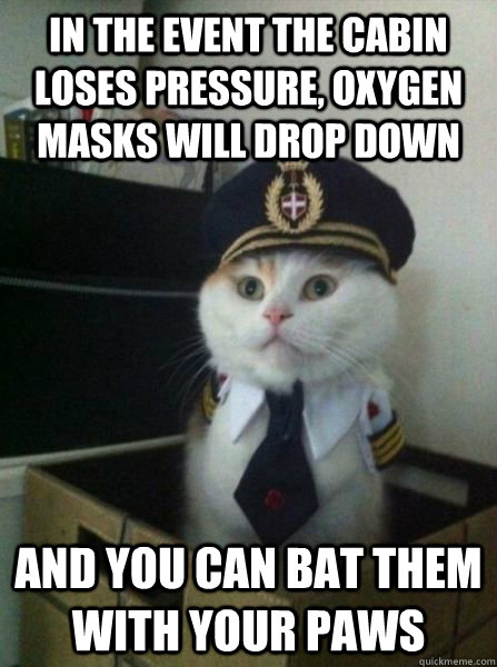 in the event the cabin loses pressure oxygen masks will dro - Captain kitteh