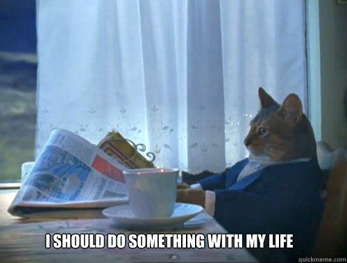 i should do something with my life - The One Percent Cat