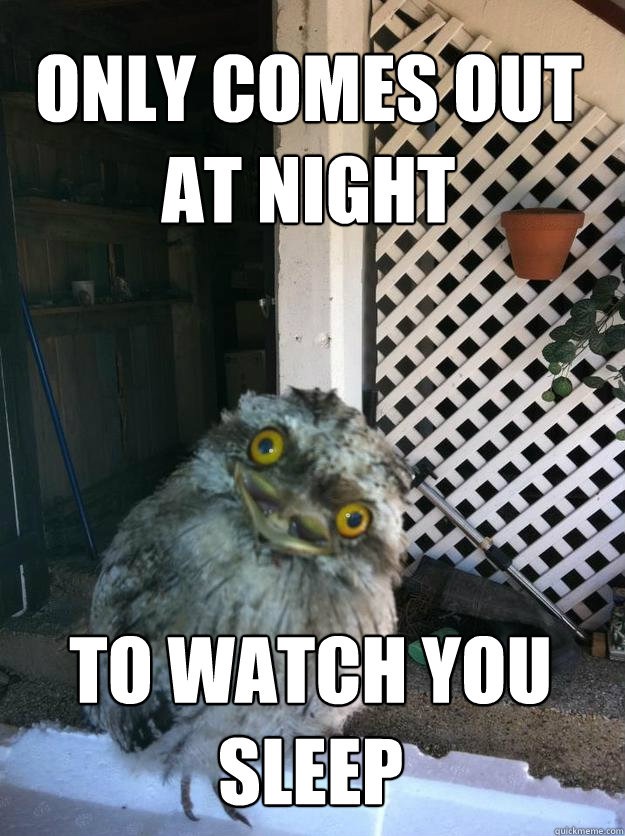 only comes out at night to watch you sleep - Overly Attached Owl