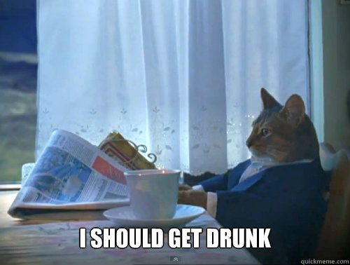 i should get drunk - The One Percent Cat