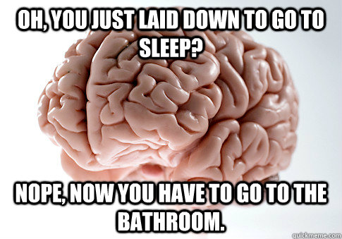 oh you just laid down to go to sleep nope now you have to - Scumbag Brain