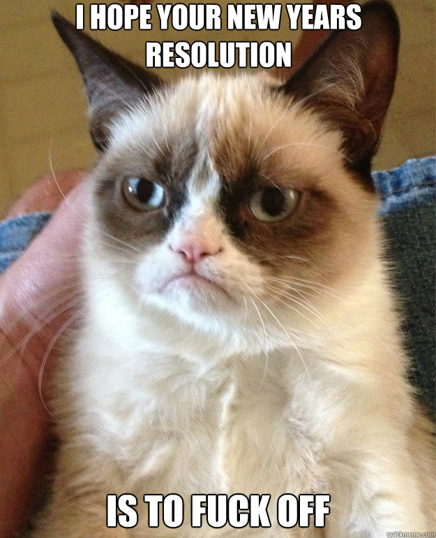 i hope your new years resolution is to fuck off - Grumpy Cat