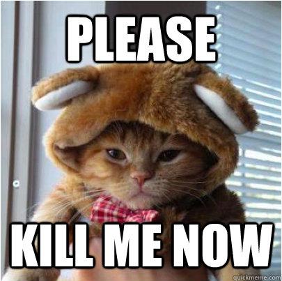 please kill me now - Kill Me Now Cat - quickmeme