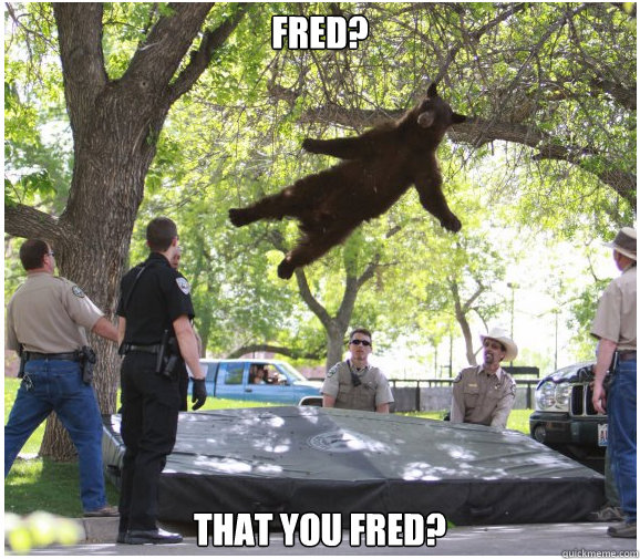 fred that you fred - Floating Bear