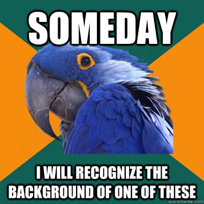 someday i will recognize the background of one of these - Paranoid Parrot