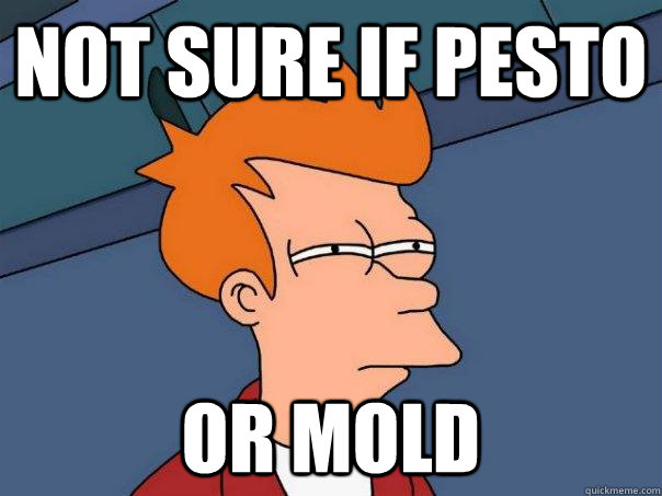 not sure if pesto or mold - Futurama Fry