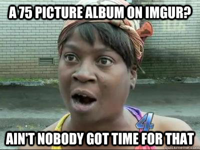 a 75 picture album on imgur aint nobody got time for that - No Time Sweet Brown