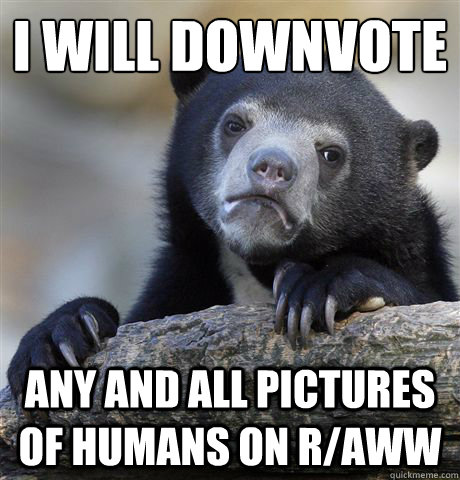 i will downvote any and all pictures of humans on raww - Confession Bear