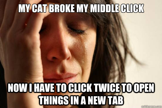 my cat broke my middle click now i have to click twice to op - First World Problems