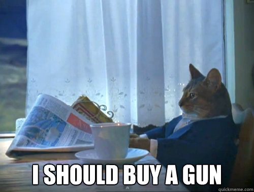 i should buy a gun - The One Percent Cat