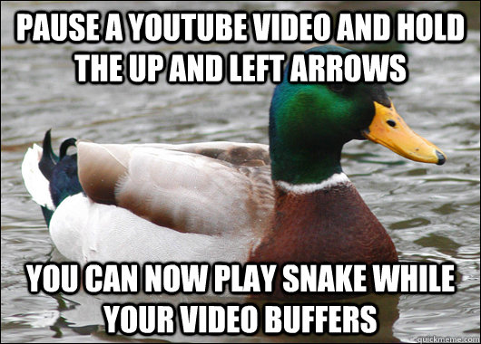 pause a youtube video and hold the up and left arrows you ca - Actual Advice Mallard