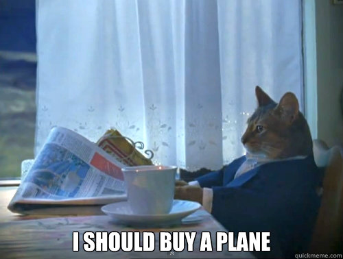 i should buy a plane - The One Percent Cat