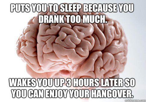 Puts you to sleep because you drank too much Lets spend the  - Scumbag Brain