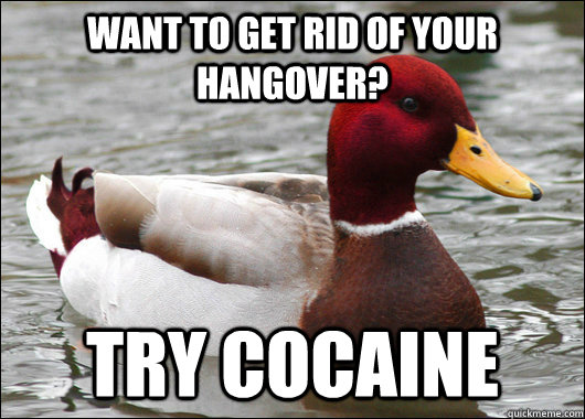 want to get rid of your hangover try cocaine - Malicious Advice Mallard