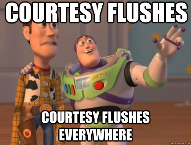 courtesy flushes courtesy flushes everywhere - Buzz Lightyear