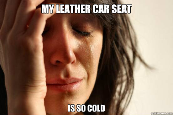 my leather car seat is so cold - First World Problems
