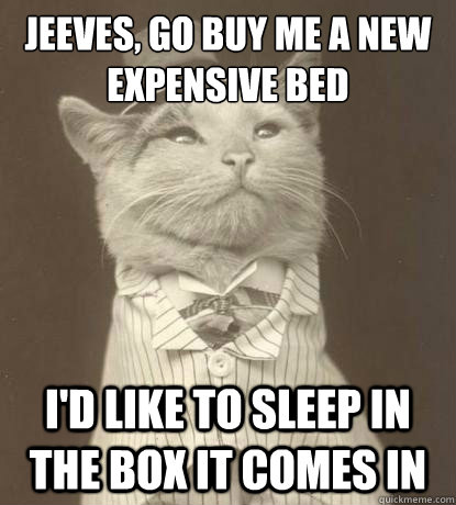 jeeves go buy me a new expensive bed id like to sleep in - Aristocat