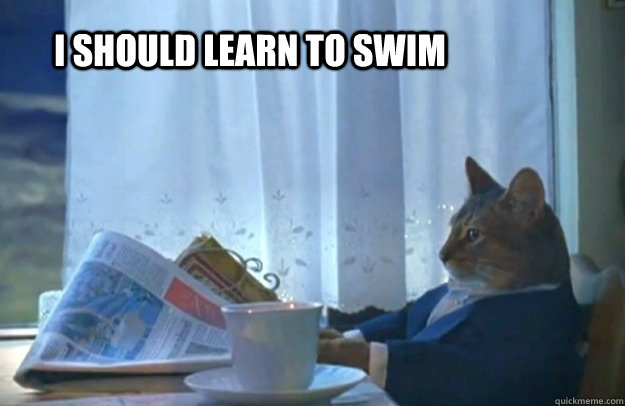 i should learn to swim - Sophisticated Cat