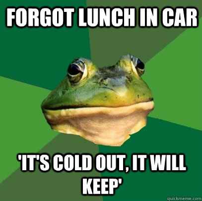 forgot lunch in car its cold out it will keep - Foul Bachelor Frog