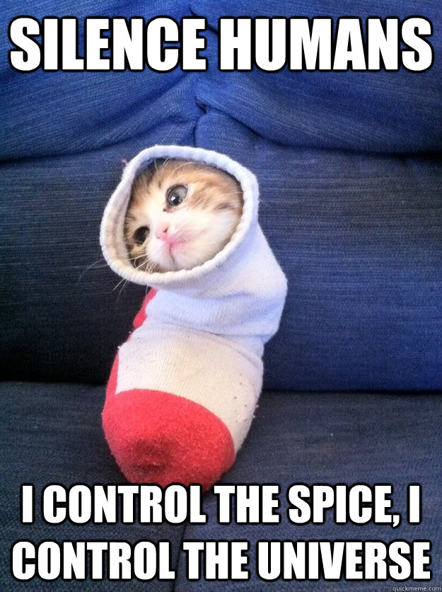 silence humans i control the spice i control the universe - Sock Kitty