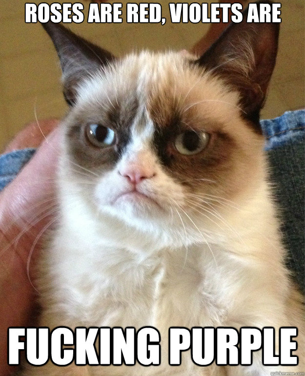 roses are red violets are fucking purple - Grumpy Cat