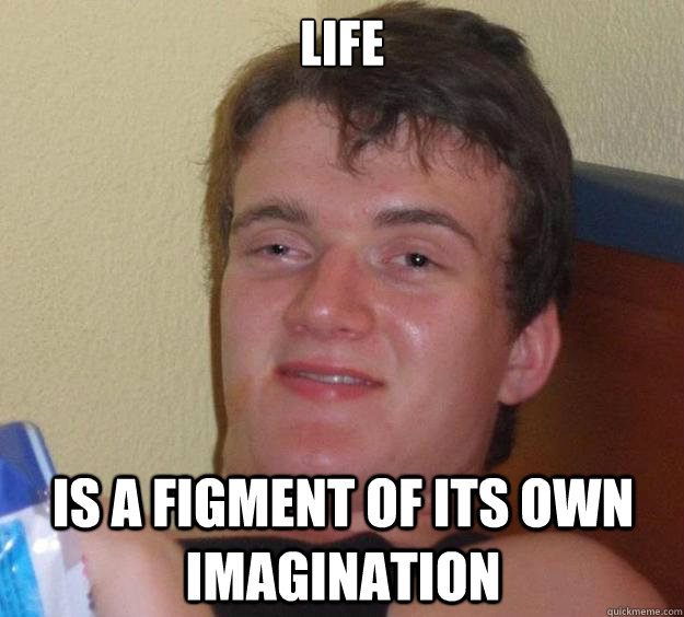 life is a figment of its own imagination - 10 Guy