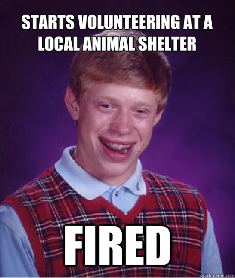 starts volunteering at a local animal shelter fired - Bad Luck Brian