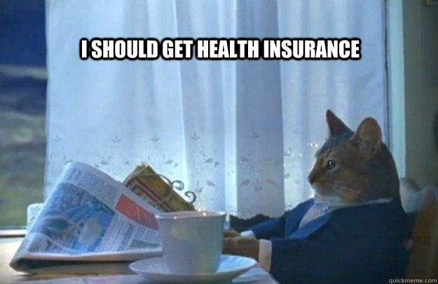 i should get health insurance  - Sophisticated Cat